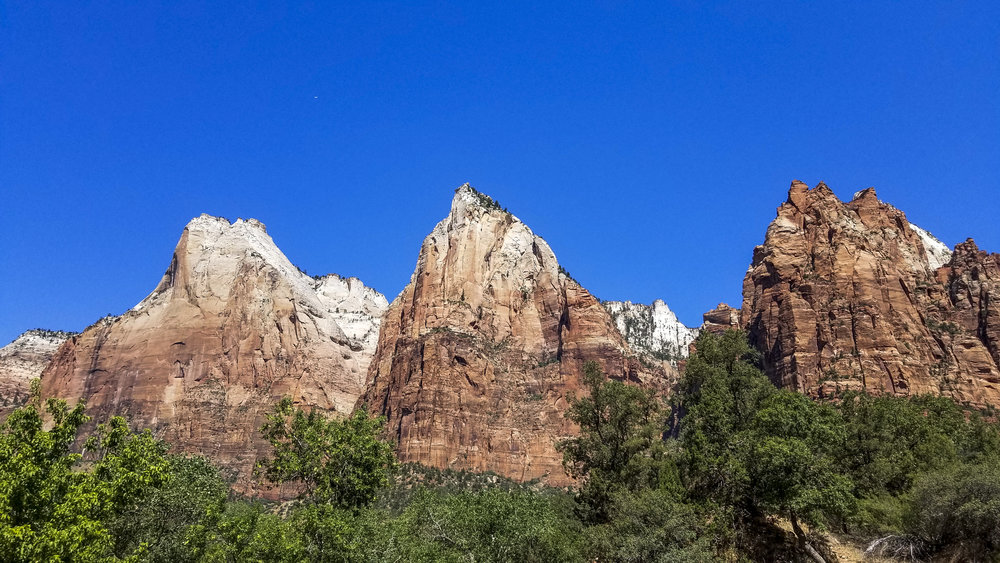 The cliffs of Zion National Park toward above the road in Utah on Friday, July 14, 2017.  Patrick Connolly Las Vegas Review-Journal @PConnPie