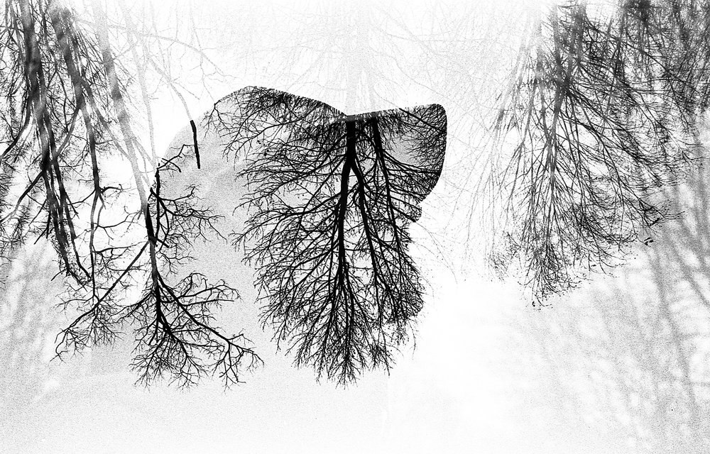 Examining the relationship between person and place by using analog double exposures. Shot mostly on Tri-X 400.