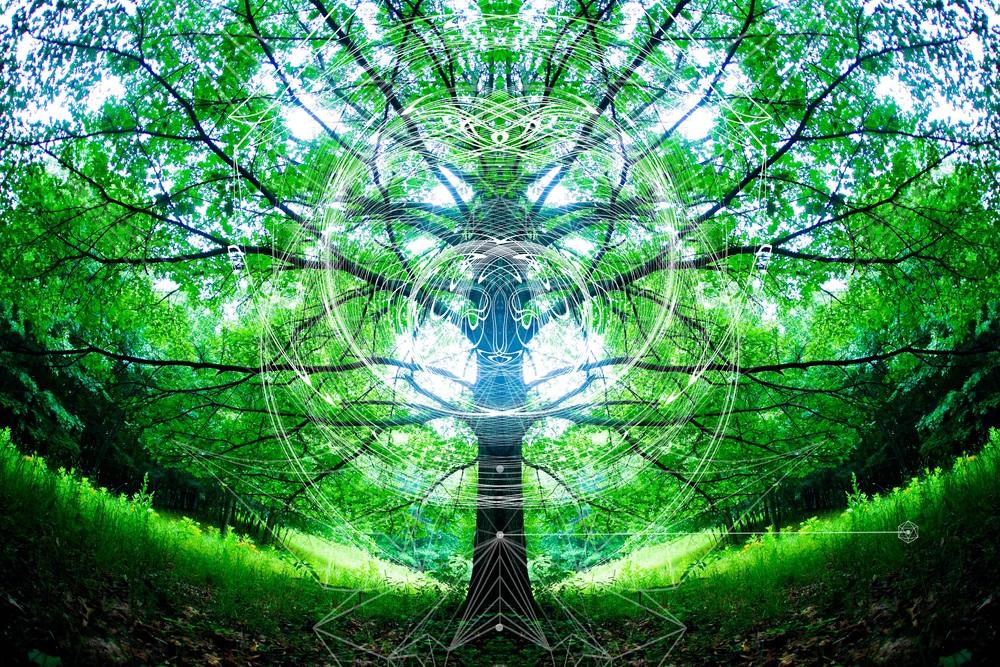 alienlinetotemtreeicosmaller.jpg