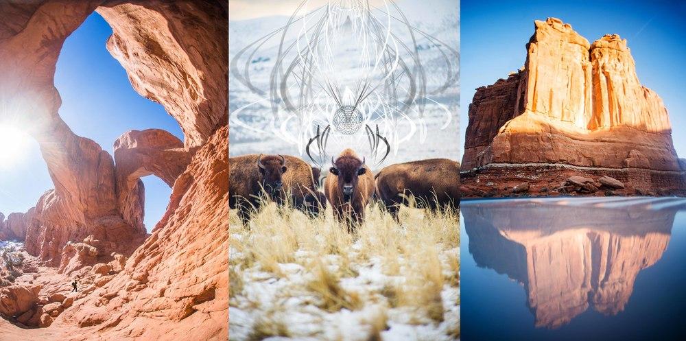 Collage5psd.jpg