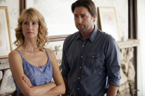 Laura Dern and Luke Wilson in Enlightened (Image © HBO)