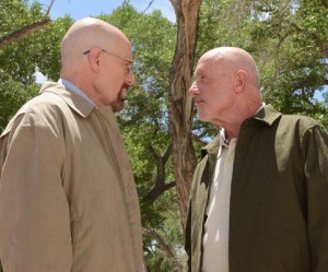 Mike and Walt square off (Image © AMC)