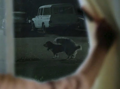 (Image © Lionsgate/AMC)