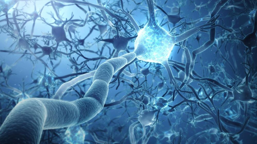 Neuron-Network-IOW9.jpg