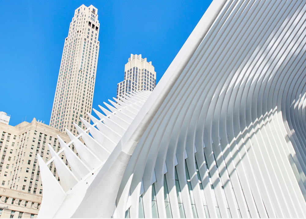 SPINE OR CALATRAVA?! NYC, 2017