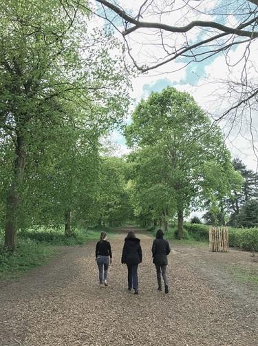 farnham walk for blog.jpg