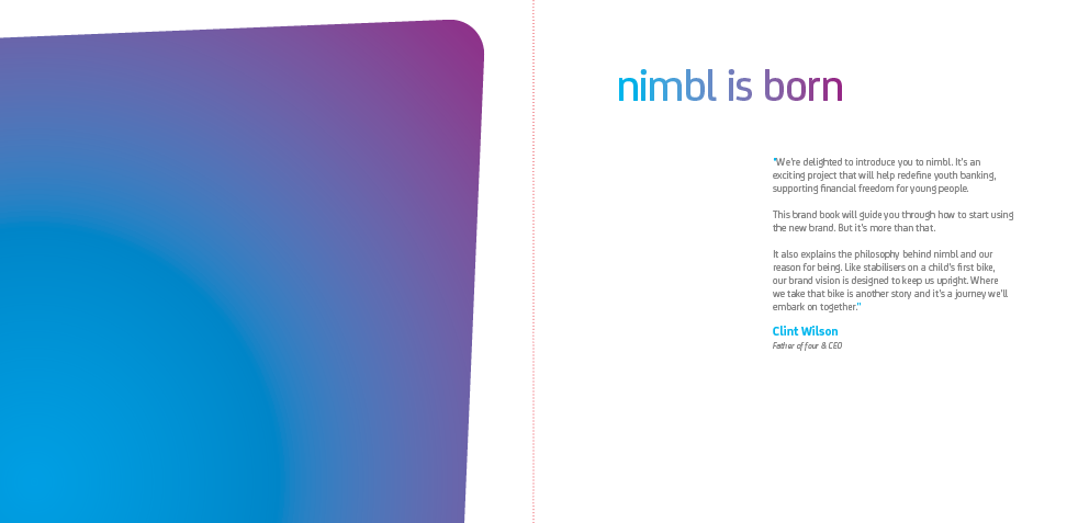 PPA-002_Nimble-Brand-Guide_2015-08-032.png
