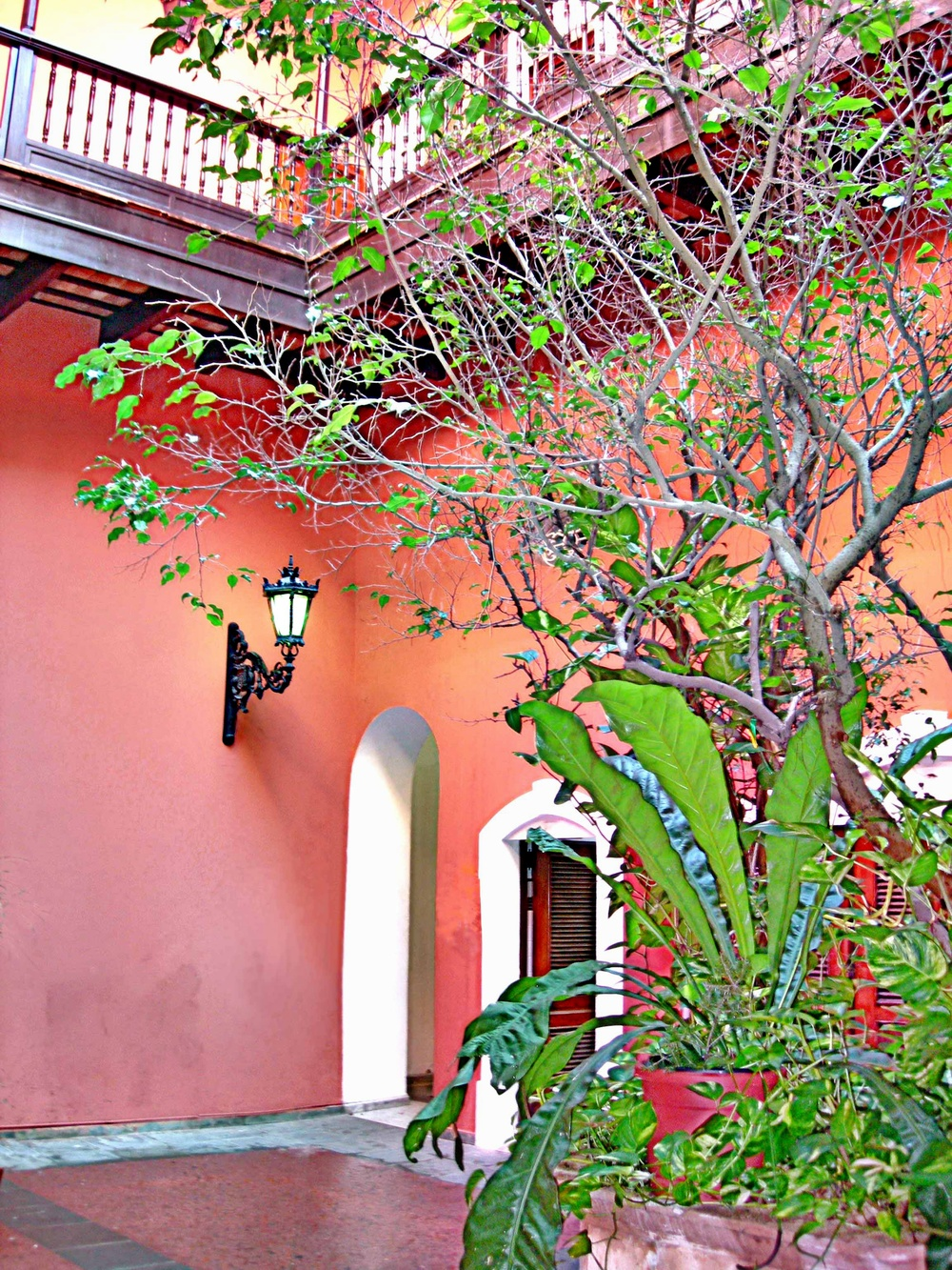 Courtyard in Many Shades of Color  C111