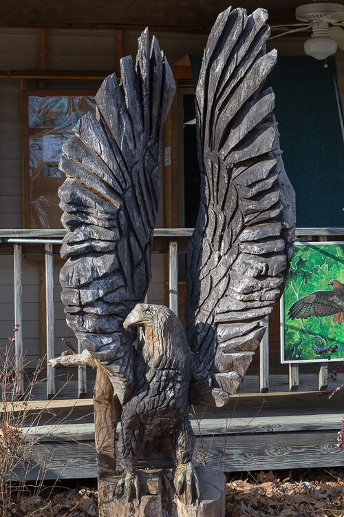 Carved Eagle Statue At World Bird Sanctuary