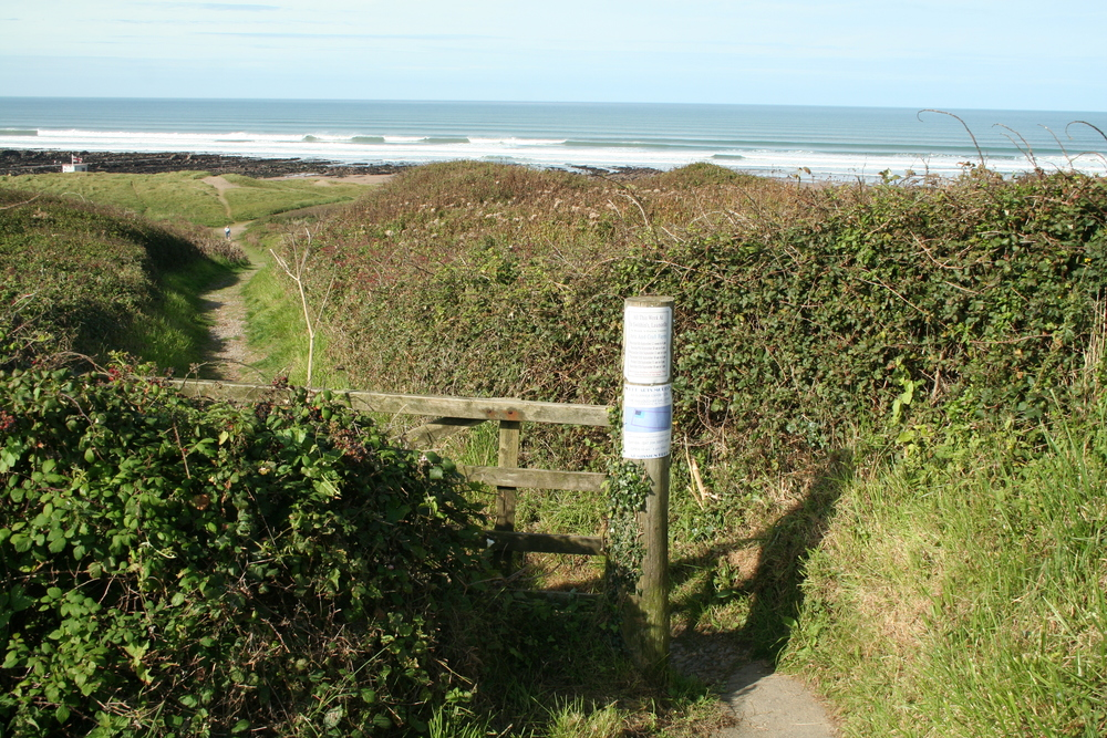 Path over dunes to the beach