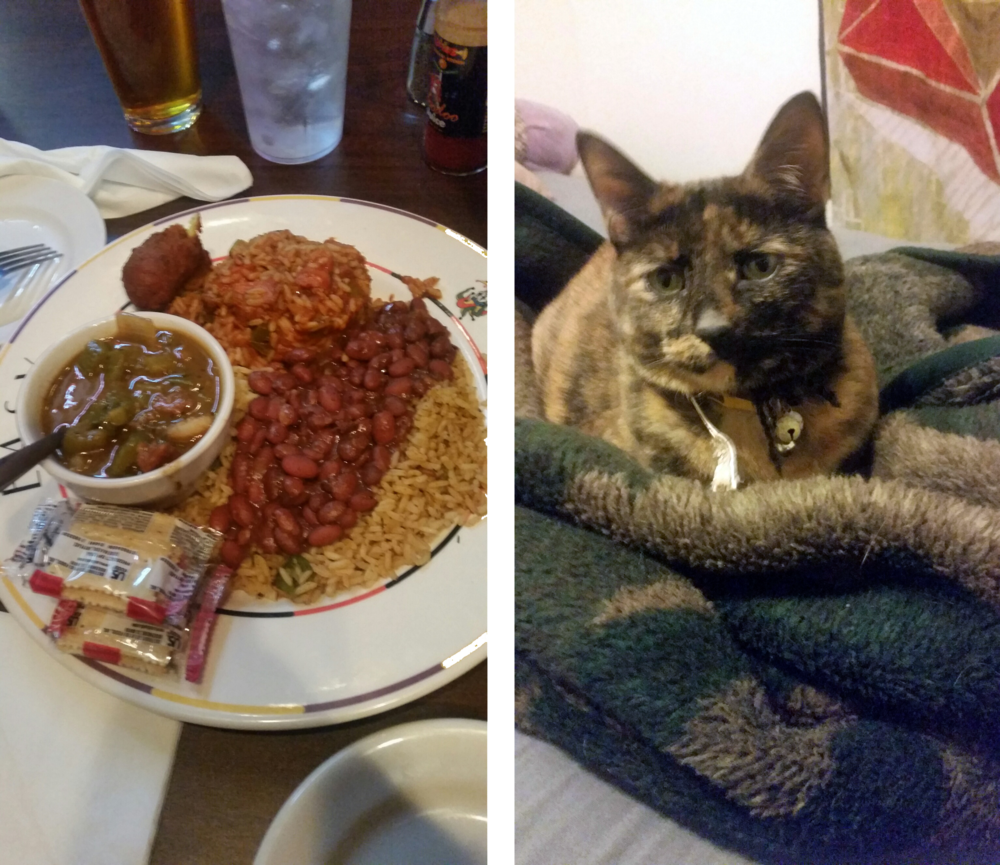 I somehow only managed to get two photos while back home. Cajun food & my baby girl.