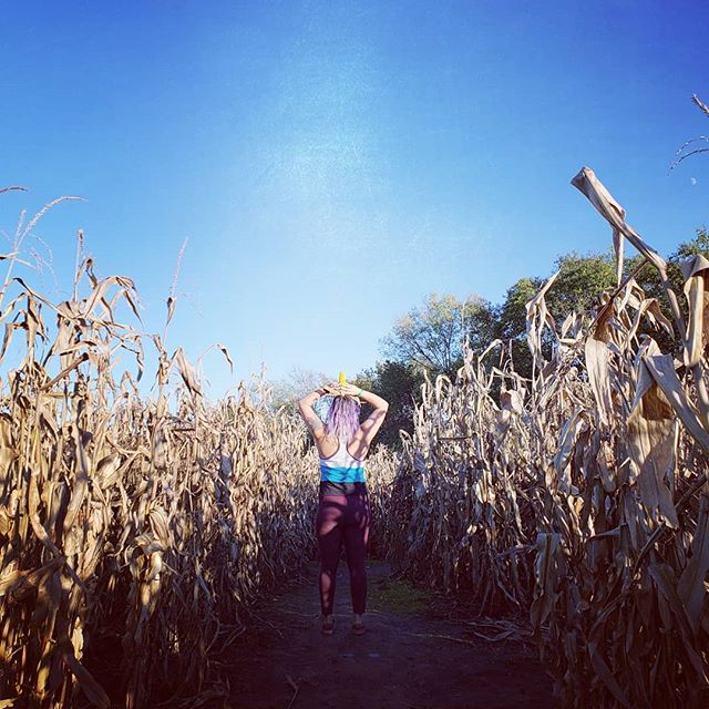Sometimes life is a maze. But it's not always about finding the end. Just enjoy the journey.. . . . #cornmaze #cheesy #kansascity #findyourself #dailyinspiration #missouri #travelmore #wonderlust #expandyourplayground #explore #experience #travel #wanderlust #travelgram #travelgirl #outdoors #adventurethatislife #funfarm #scenery #beautiful #travelphotography #love #farm #naturelover #adventure #fall #wander #photooftheday #fuckyeah