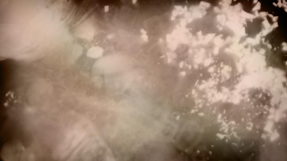 tsm_glass_01_o.jpg