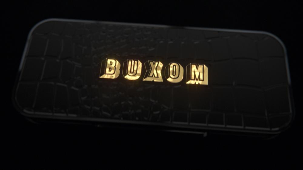 BuxomLogo_Card_v001c_v02 (00295).png