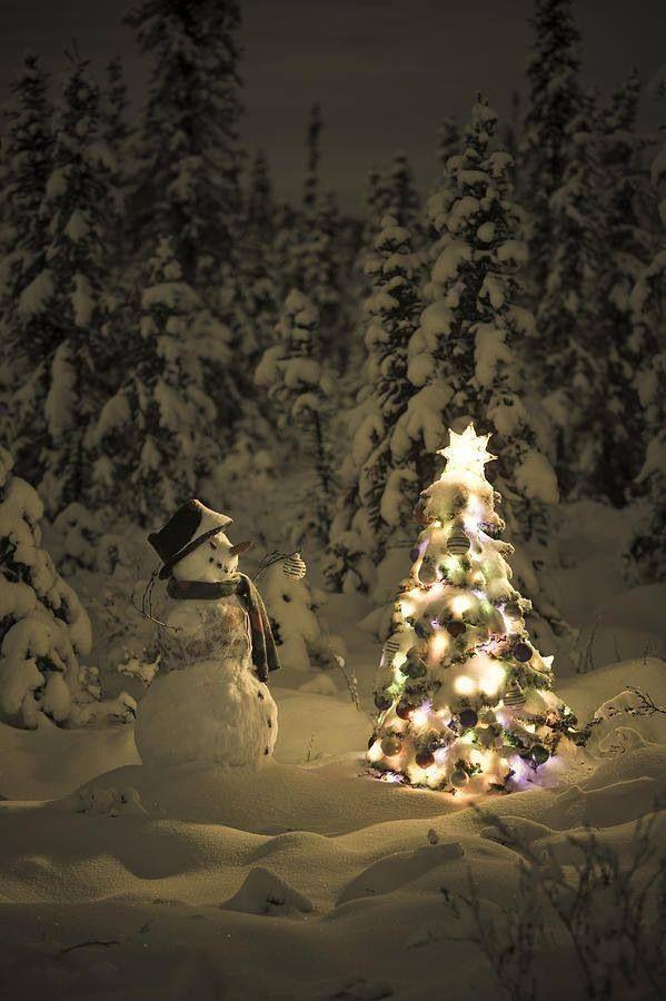 Photo credit:  Christmas 4U