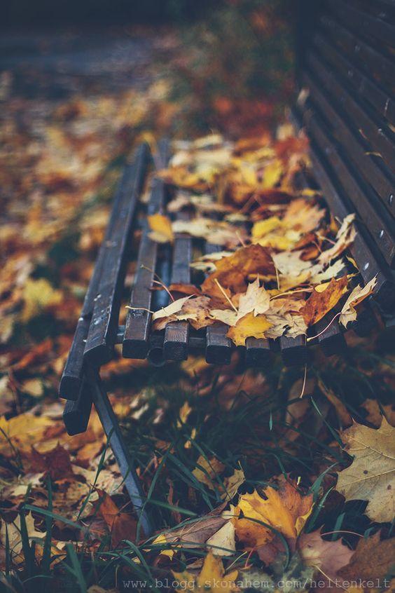 Photo credit: blogg.skonahem.com