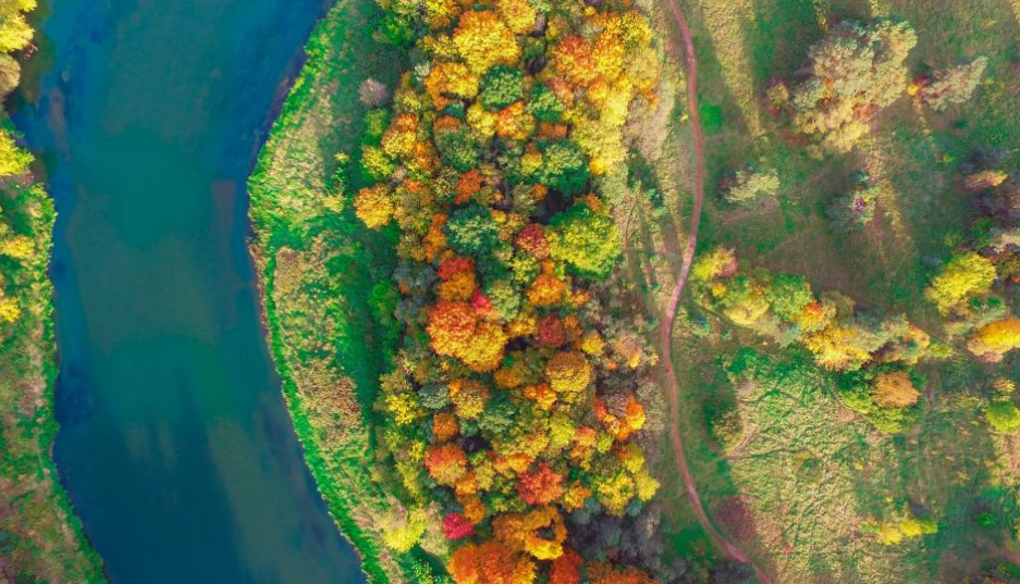 Autumn colors begin to show in Vilnius, Lithuania. Photo credit: Vaidas Geguzis
