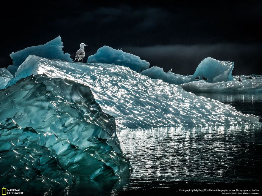"""Icescape."" Photo credit: Samira Qadir"
