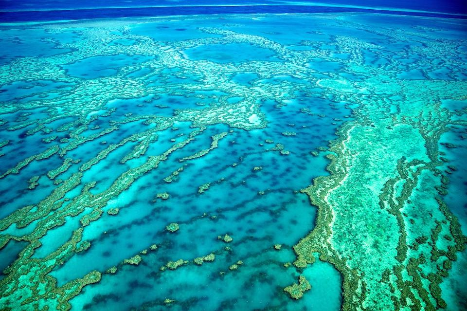 Great Barrier Reef aerial shot. Photo credit: iStock via Forbes