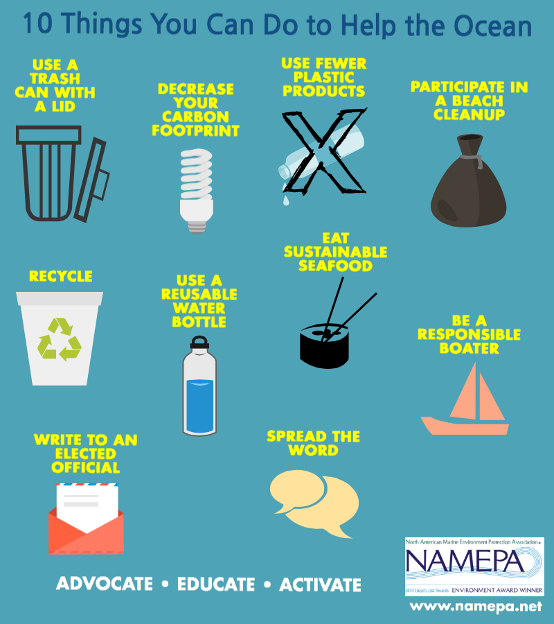 10 things to help the ocean.png
