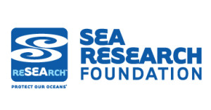 Sea-Research-300x156.jpg
