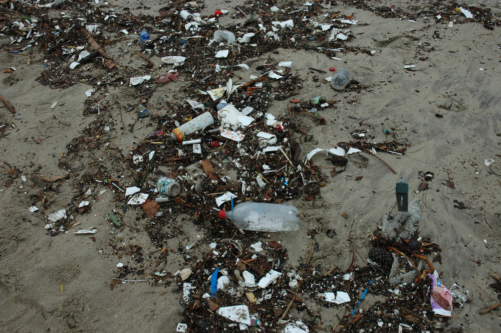 Trash and debris found on beaches could easily be prevented