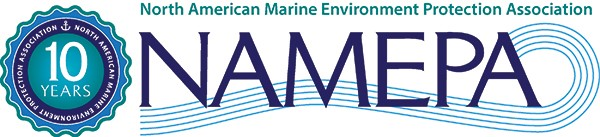 namepa 10 year logo