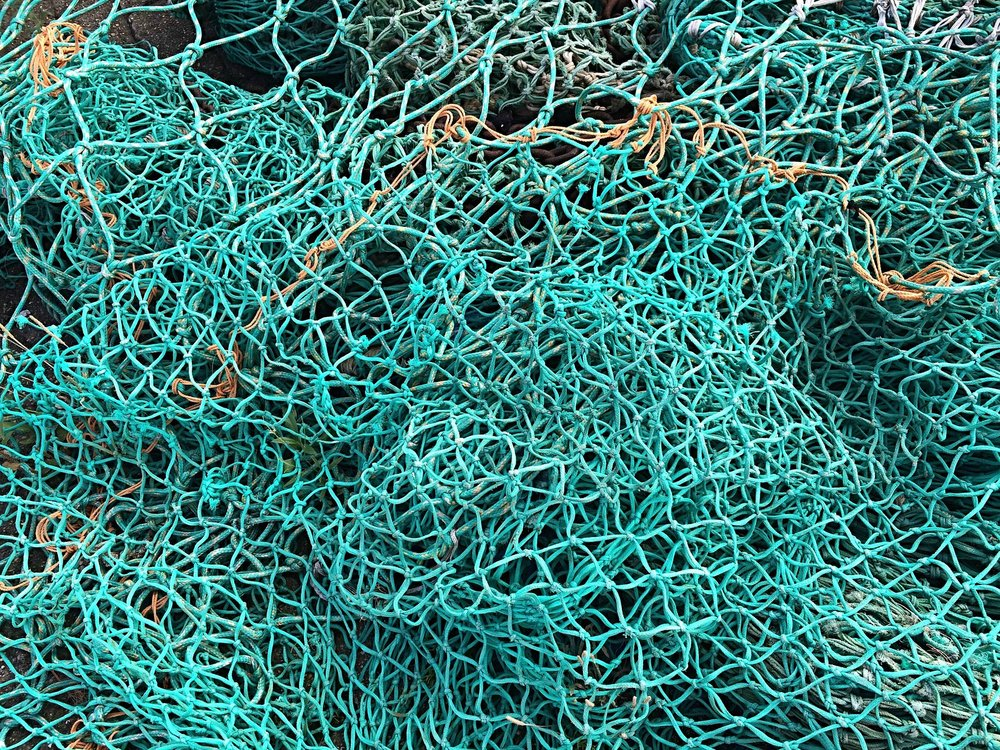 Are biodegradable fishing nets in our future?