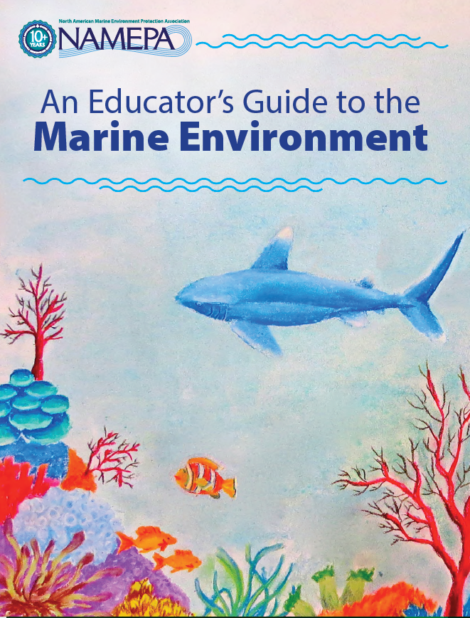 cover screenshot marine environment.png