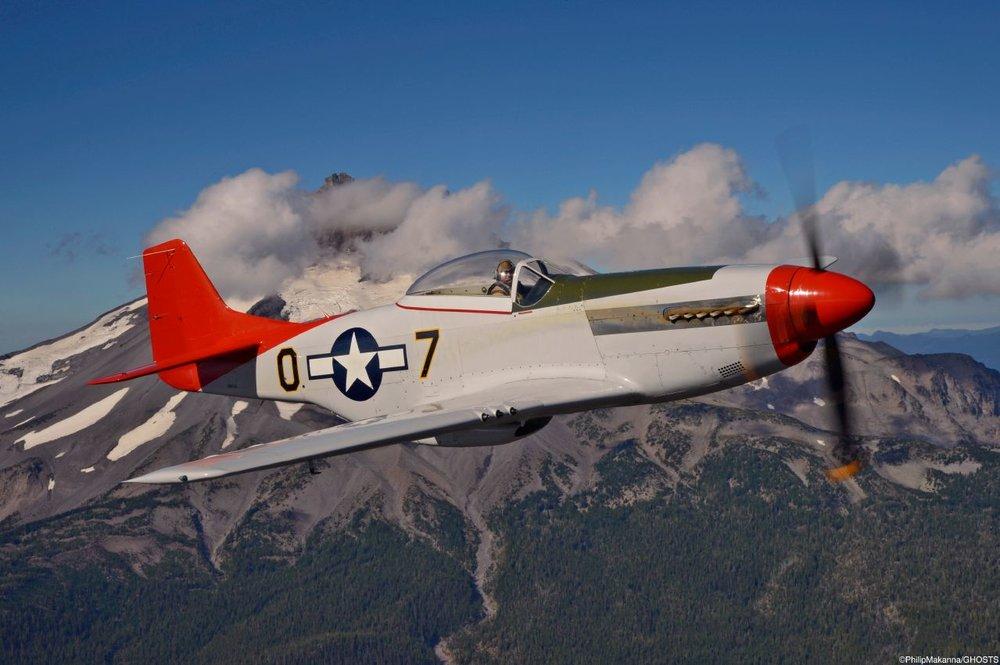 P-51 PM jpeg.jpeg