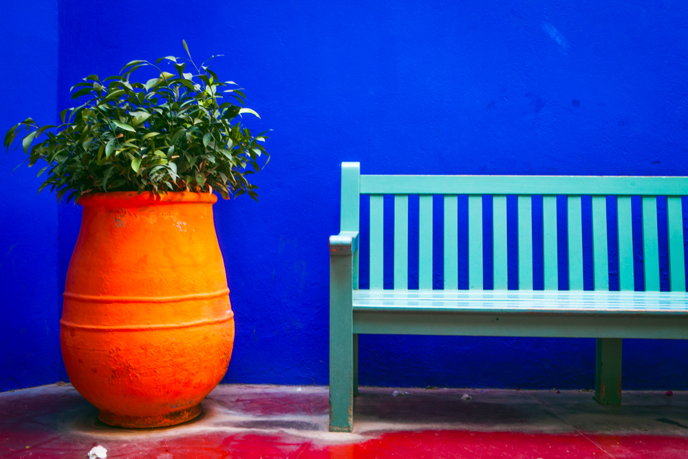 bluebenchwallorangepot.jpg