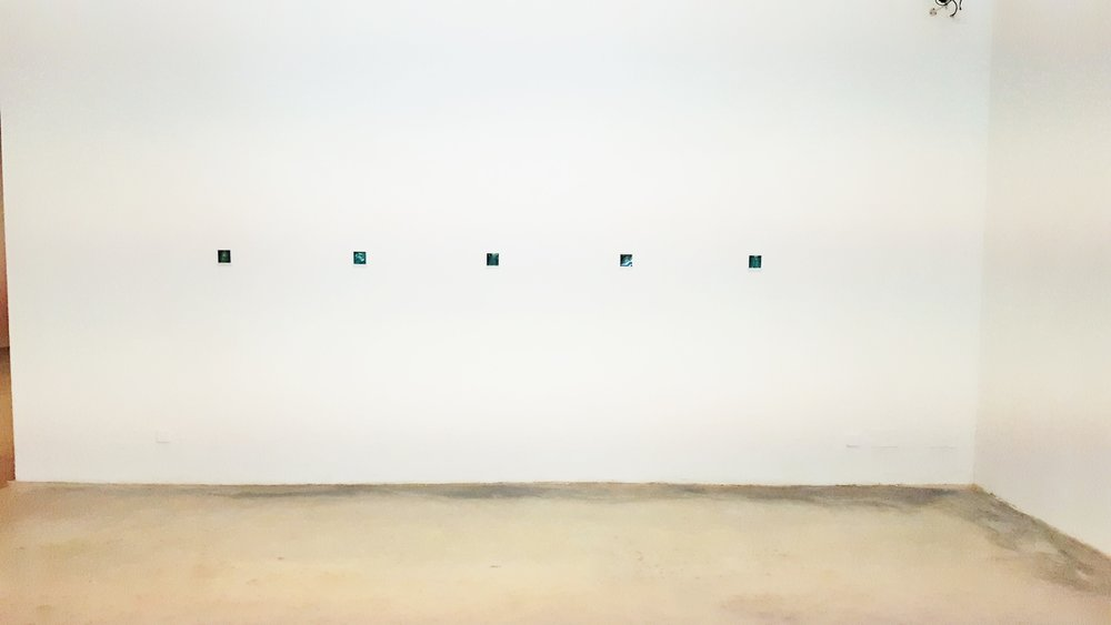 Polaroids by Shane Bradford