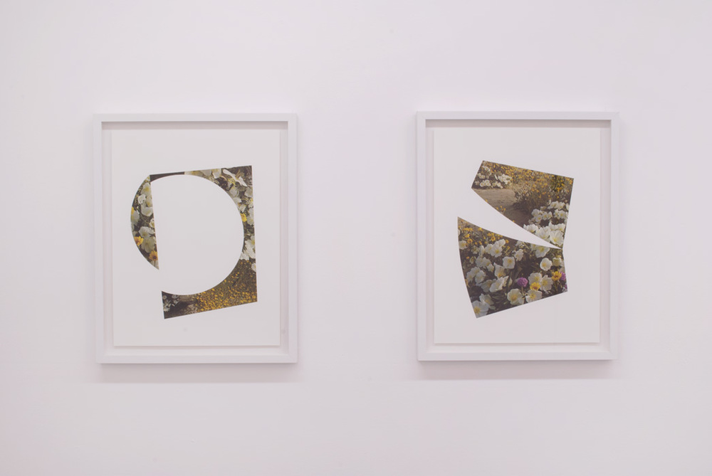 Fresh Cut Diptych,  2014   collage on paper. 17 x 21 inches (each)