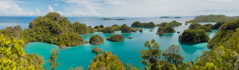Spectacular panoramic view of  Blue   Star Lagoon , upon climbing 300 shaky wooden steps.