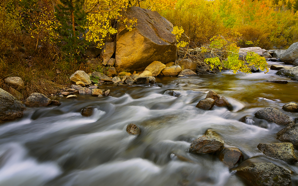 Creek With Beautiful Colors