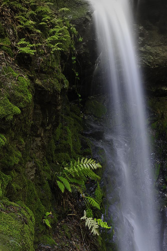 Dawn Falls