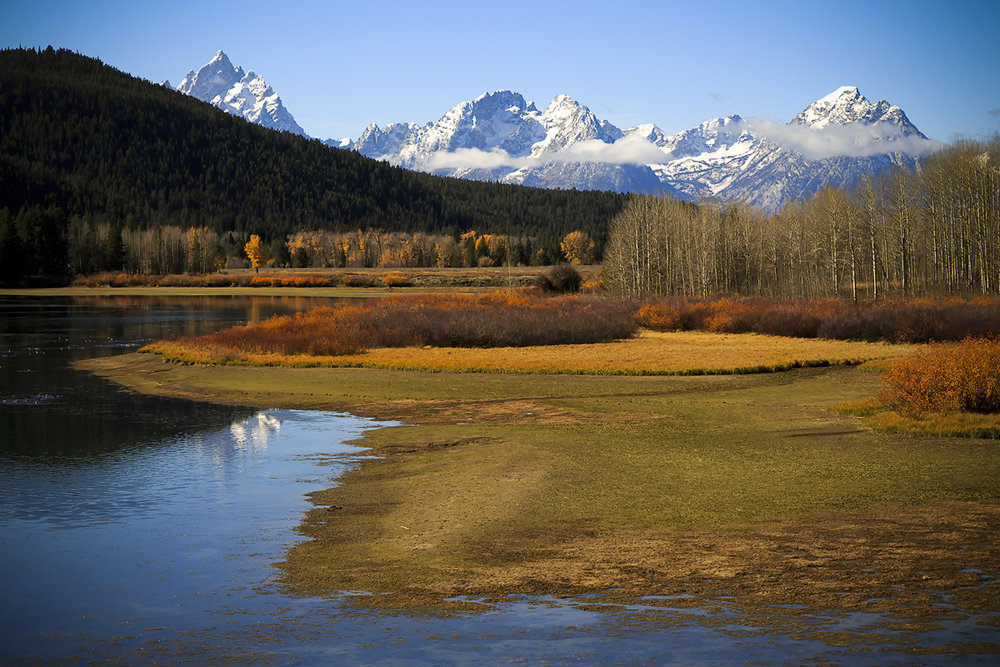 Teton Wetland