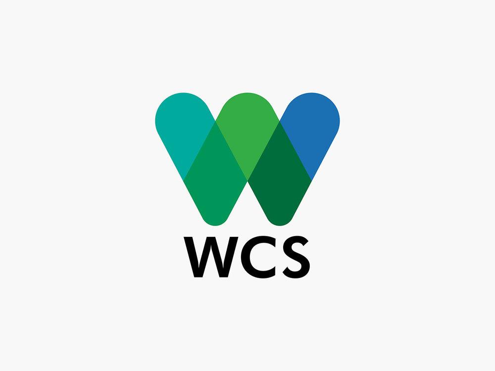 WCS_BLOG2.jpg