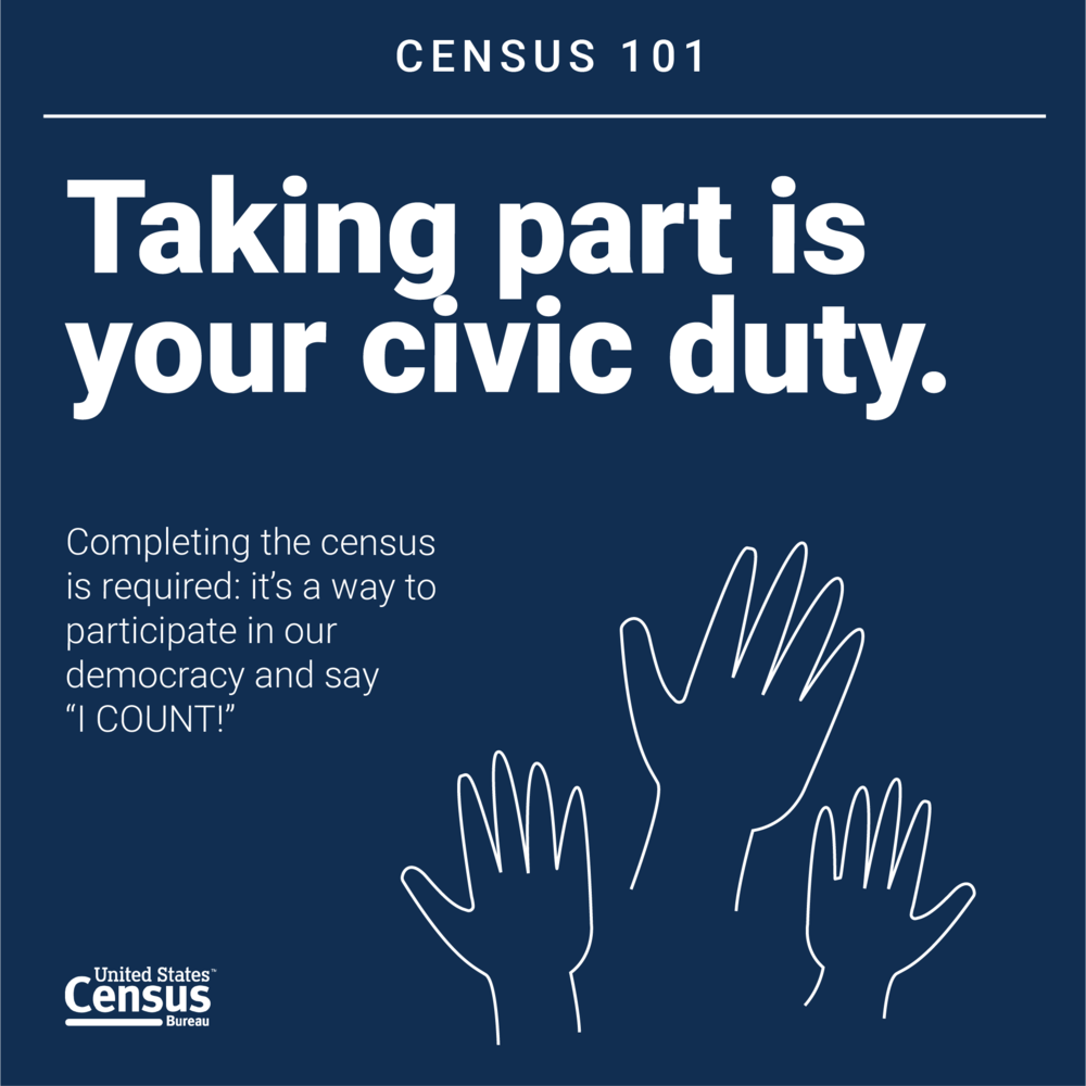 Census101_Graphics_CivicDuty.png