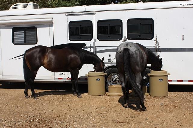 portagrazer-horses.jpg