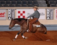 Cal Middleton Reining Horse