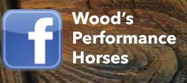 Find Wood's Performance Horses on Facebook!