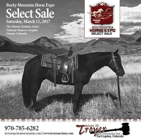 Visit Troyer Auctions website to view horses consigned to this special sale!
