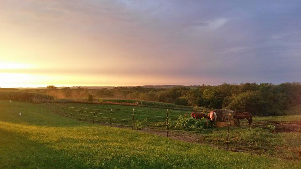VISIT ROLLING ROCK FARM - CLICK HERE....