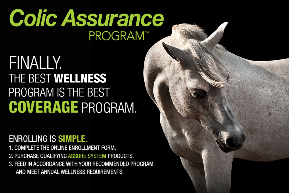 CLICK IMAGE to learn about Arenus' Colic Assurance Products and Program!