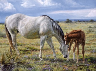 Horse Whisperer 02 C.jpeg
