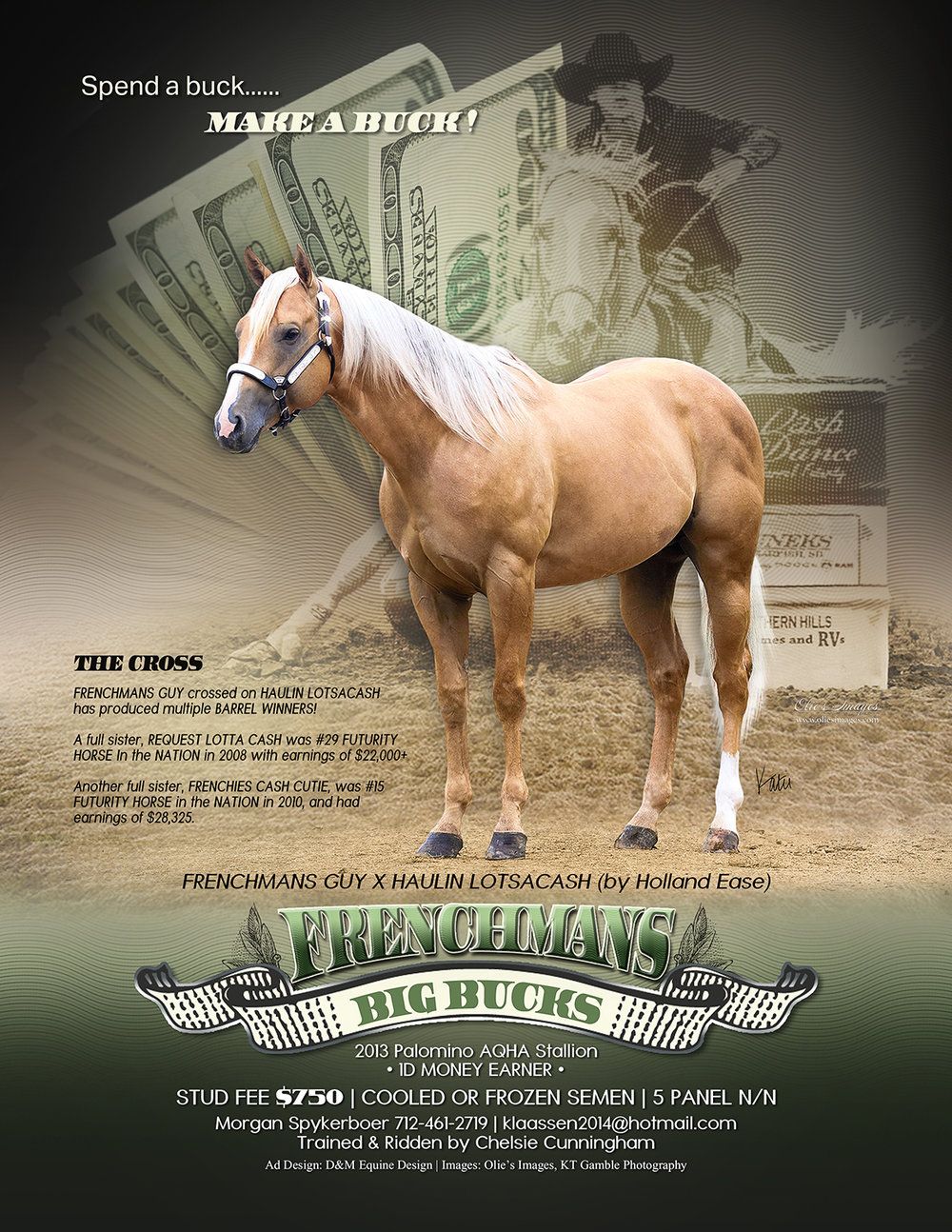 2019 Frenchmans Big Bucks Stallion Ad-FINAL for web and  Facebook.jpg