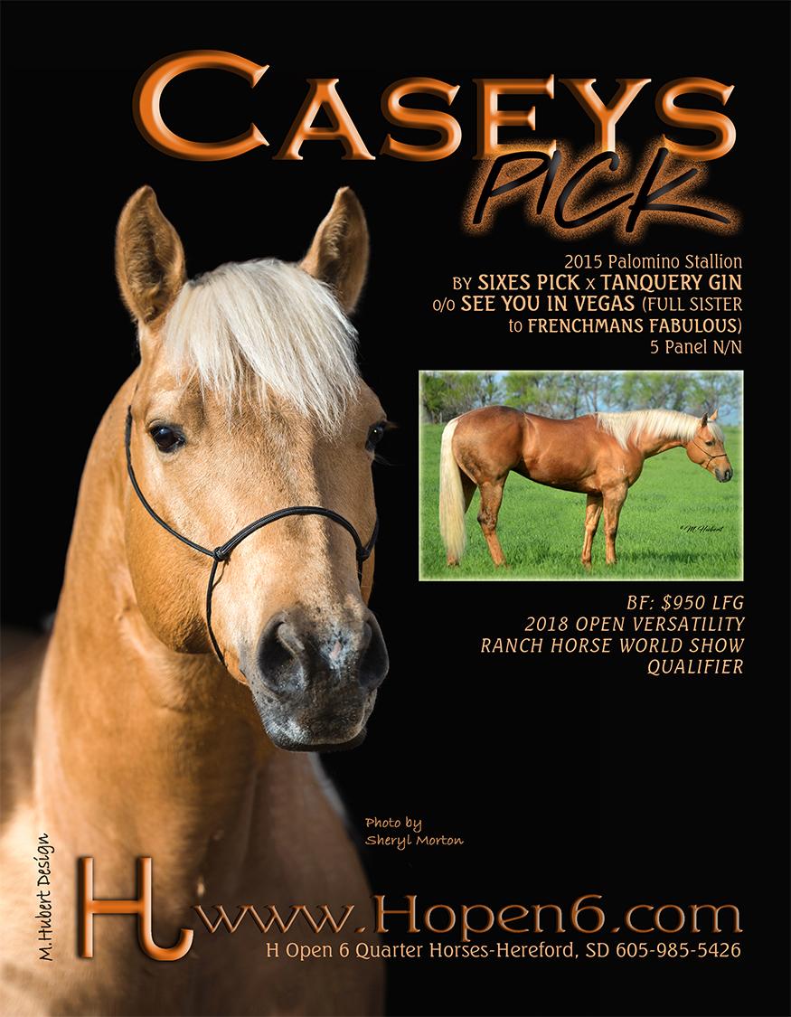 WKG HORSE 2019.jpg