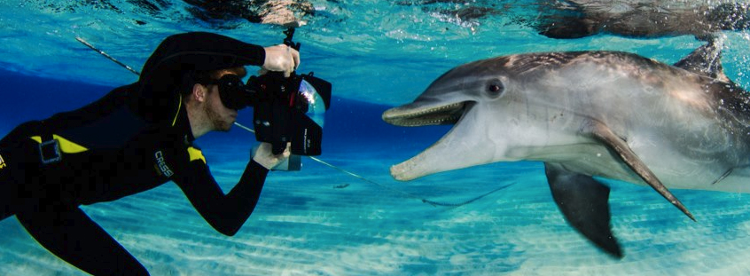 keri with dolphin.jpg
