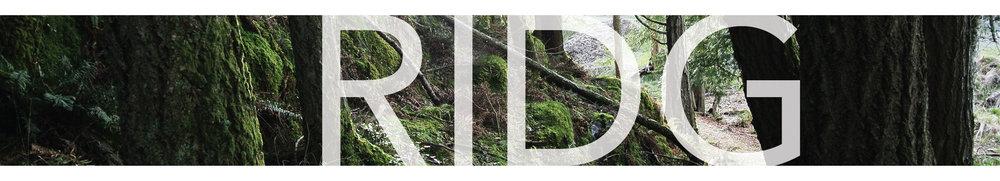 Project Tiles-10.jpg